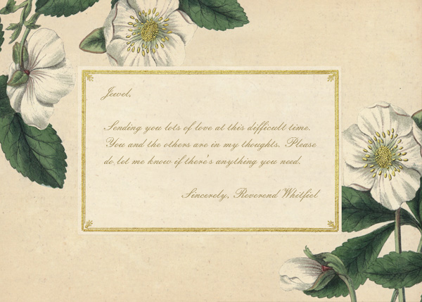 Hellebore Christmas Rose - Horizontal - John Derian - Sympathy