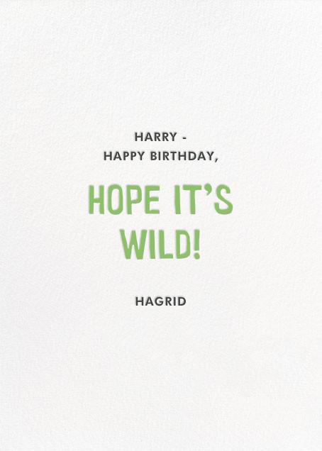 Jungle Birthday - Hello!Lucky - Back