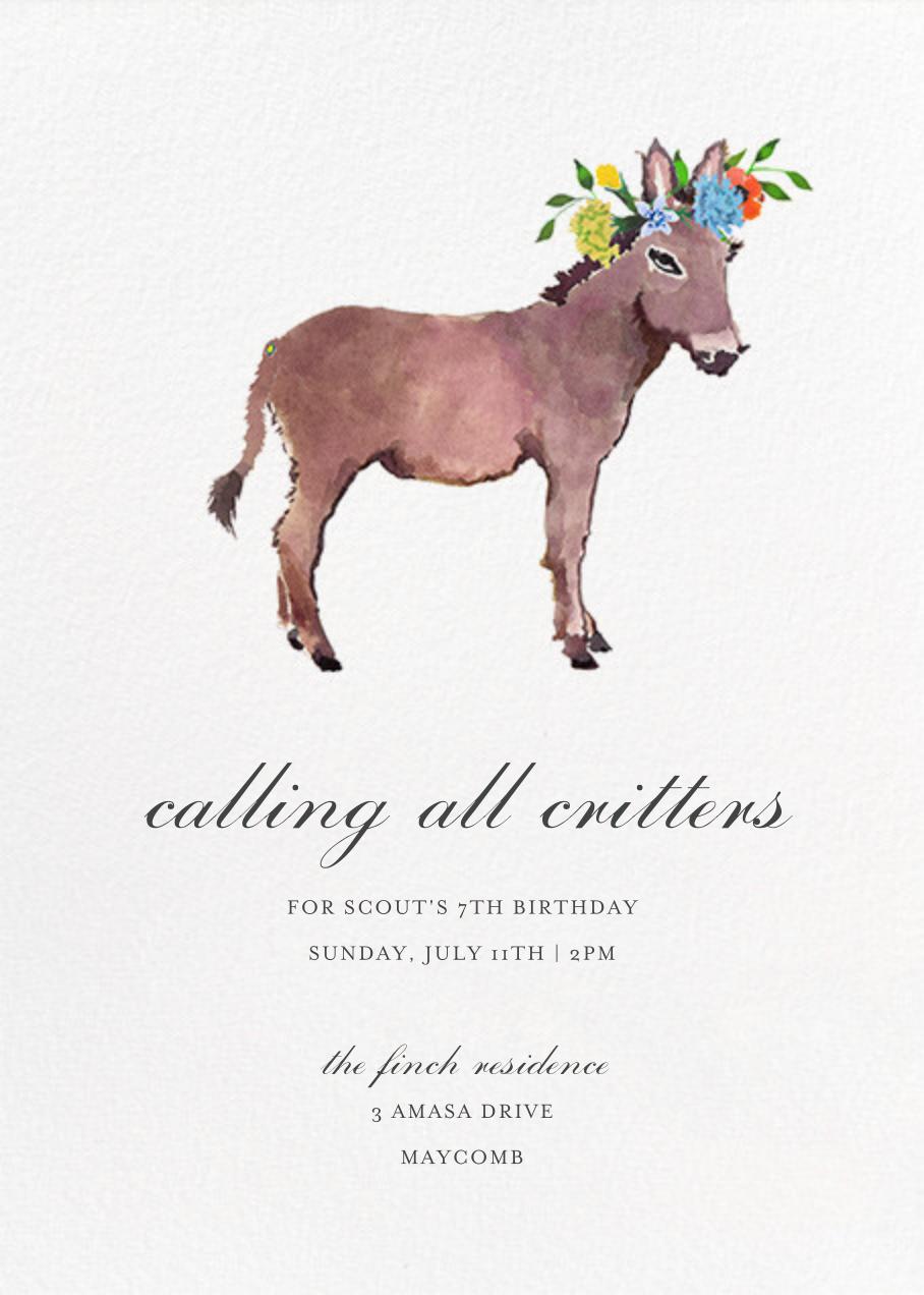 Donkey in the Meadow - Happy Menocal - Kids' birthday