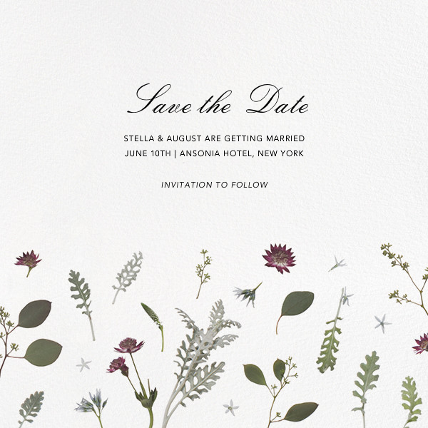 Winter Wilds (Save the Date) - Paperless Post
