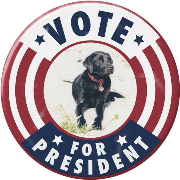Vote for President - Paperless Post - Election night