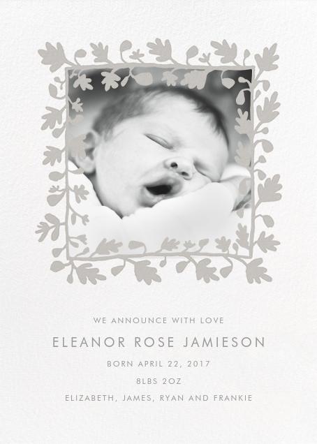 Ficus Photo (Announcement) - Gray - Linda and Harriett - Birth