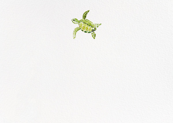 Tortuga (Stationery) - Paperless Post - Notecards