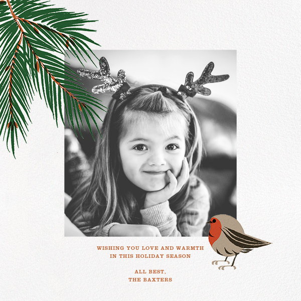 Finch and Fir (Square) - Paperless Post - Holiday cards