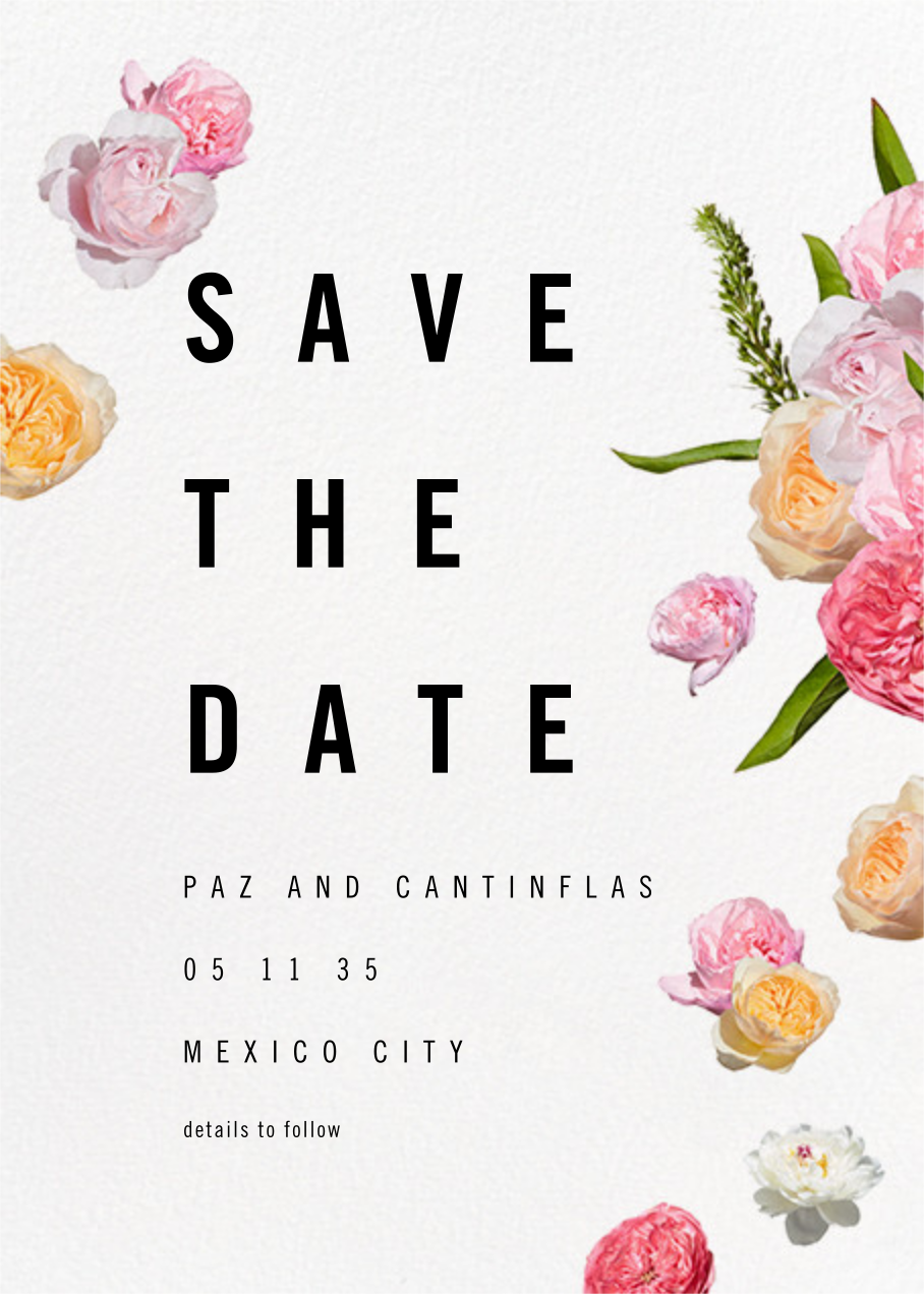 Brunswick (Save the Date) - Paperless Post - Party save the dates