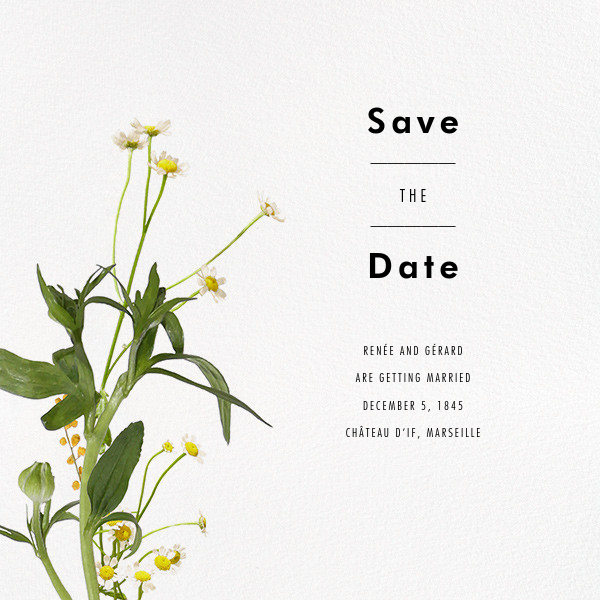 Rhône (Save the Date) - Paperless Post - Save the date
