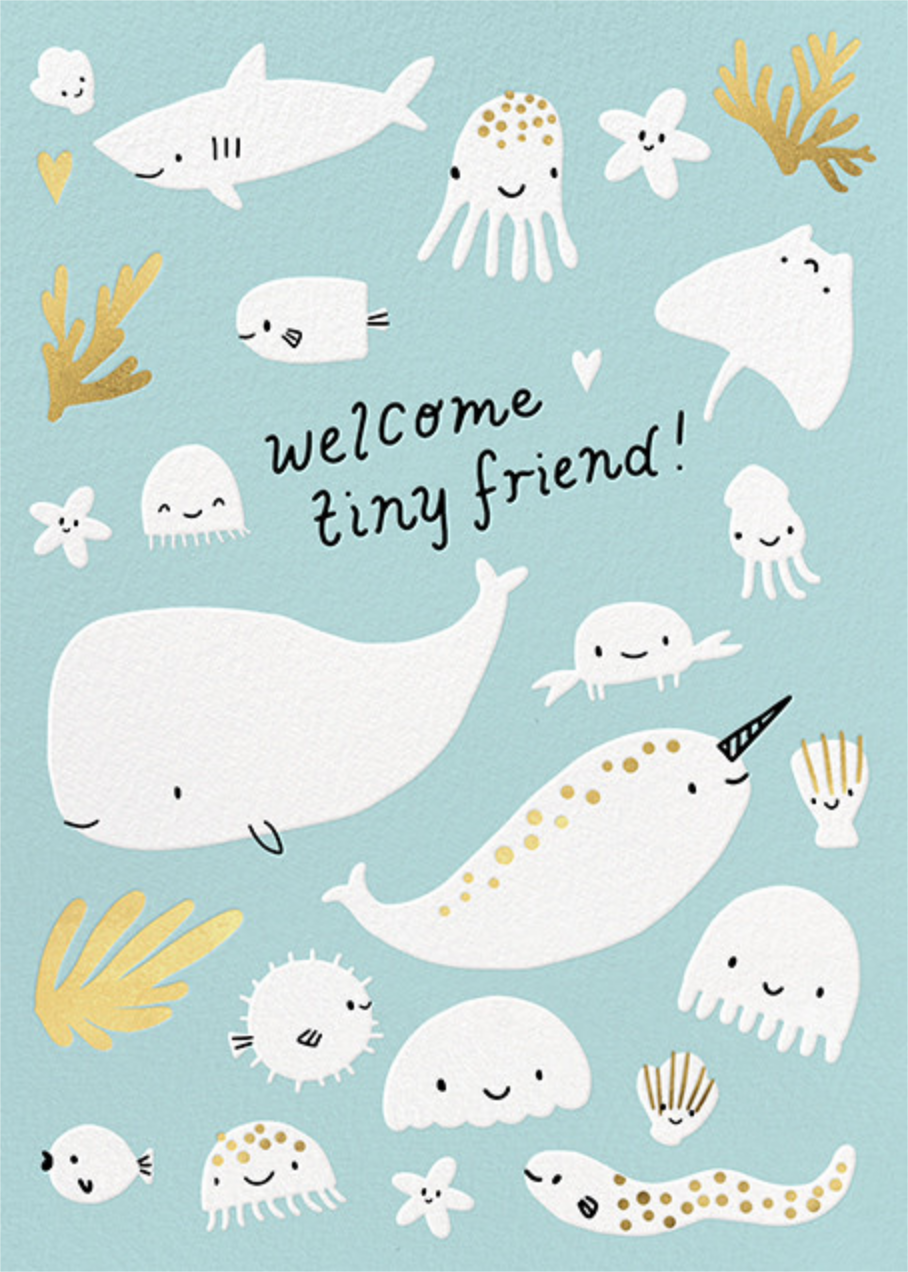 Underwater Welcome - Hello!Lucky - Congratulations