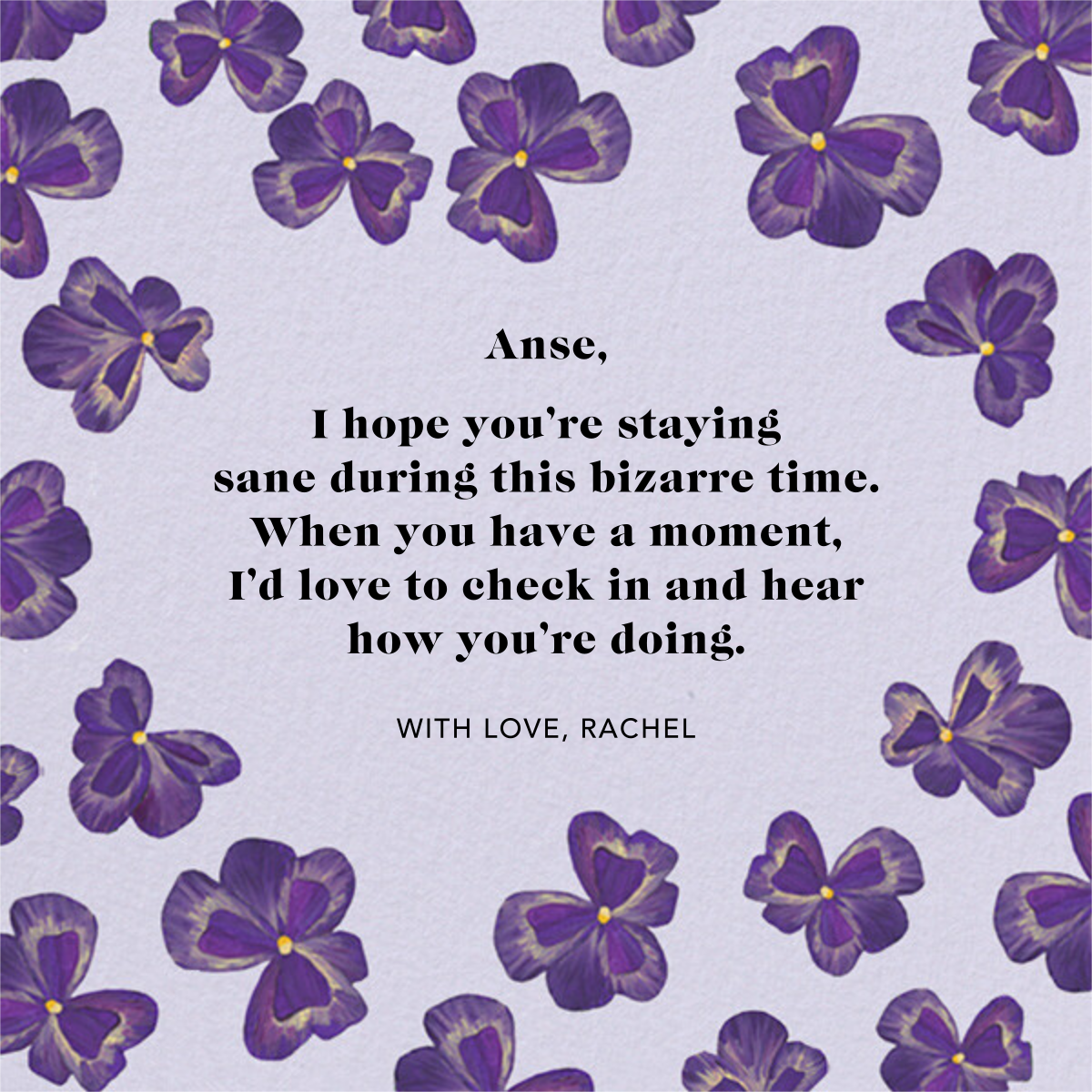 Purple Pansies - Anthropologie - Thinking of you