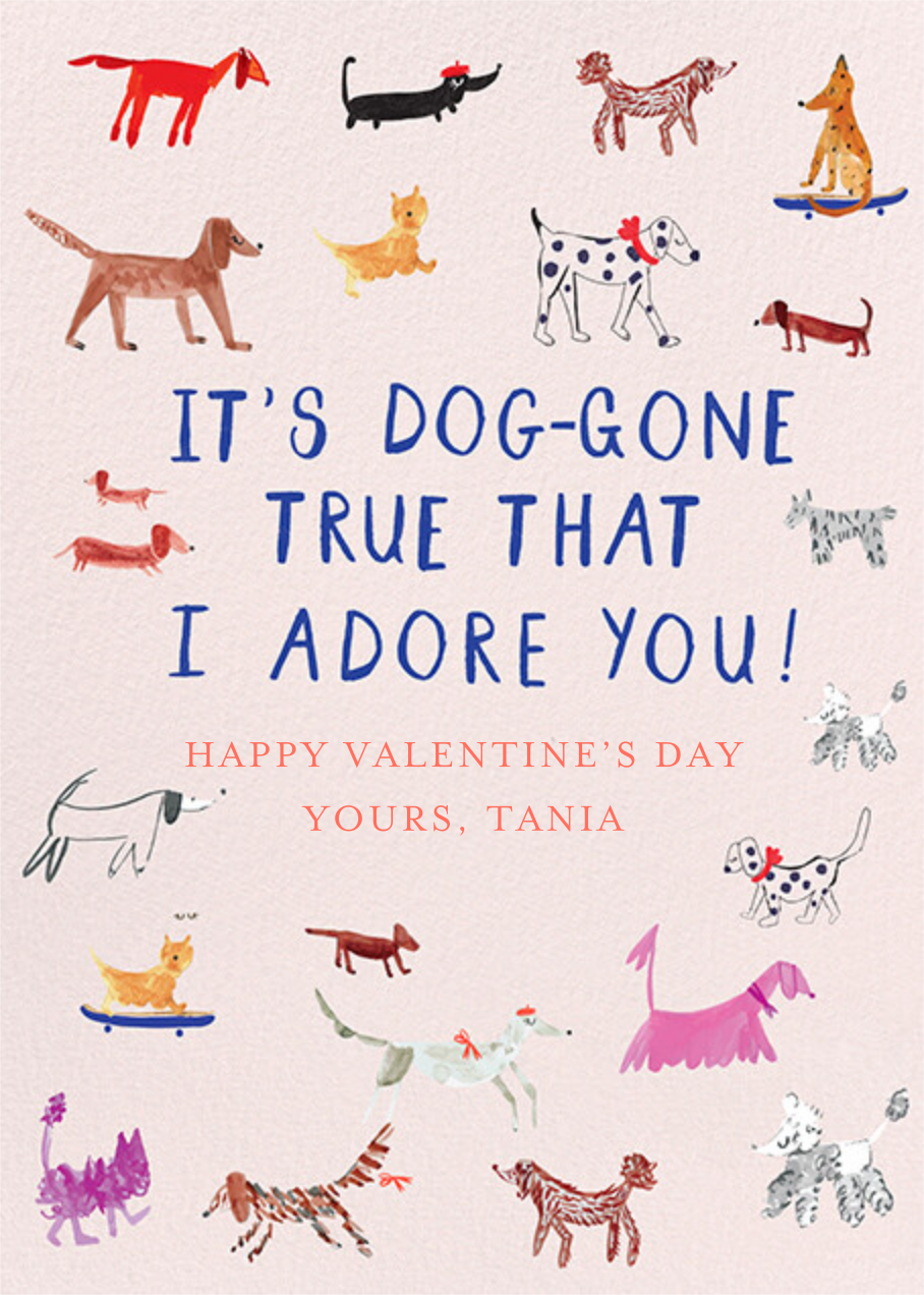 Dogs for Days - Mr. Boddington's Studio - Valentine's Day