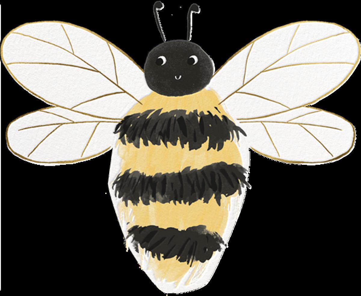 Bee There - Meri Meri - Baby shower
