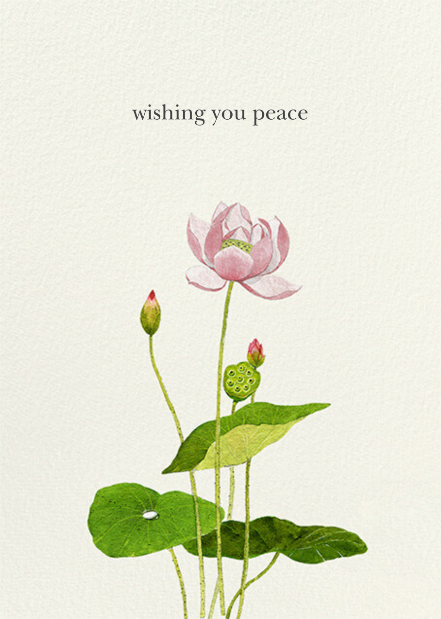 Lotus Flower - Felix Doolittle - Sympathy