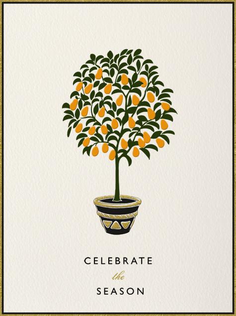 Kumquat Tree - Paperless Post