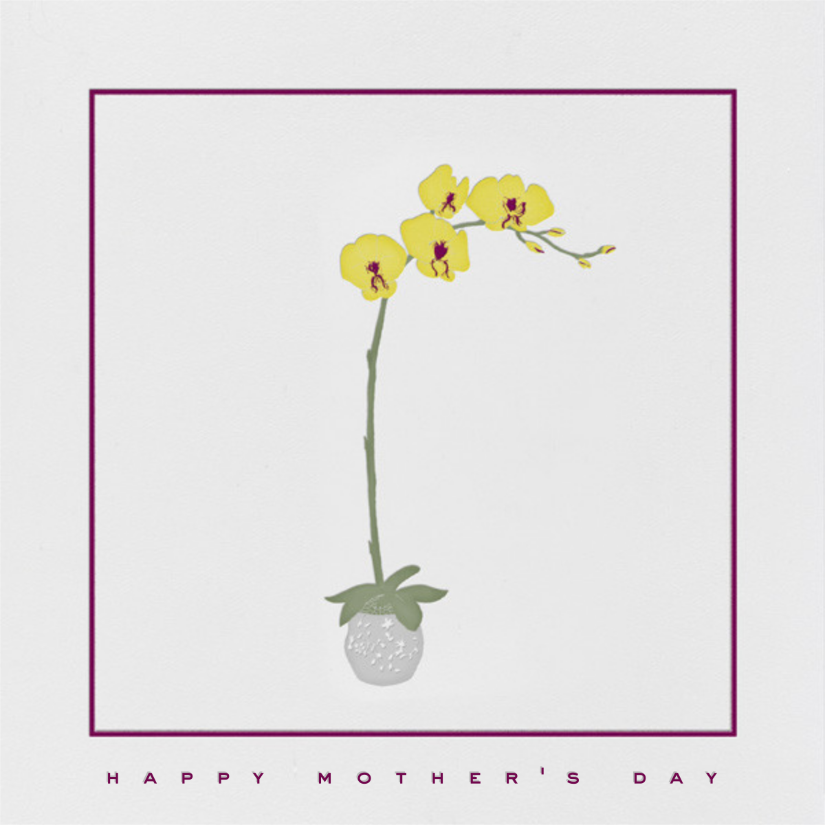 Orchid - Paperless Post - Mother's Day