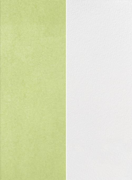Folio - Celery - Paperless Post - Modern wedding invitations